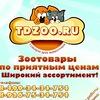 Tdzoo.ru Интернет магазин Зоотоваров