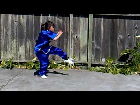 Shaolin Seven Star Fist Form 少林七星拳
