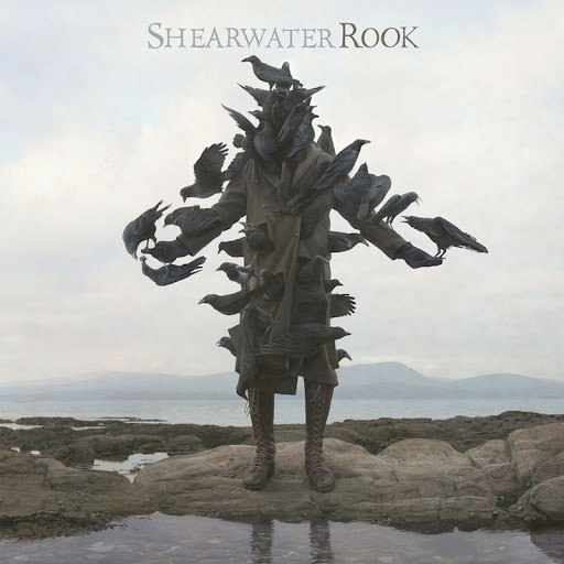 Shearwater альбом Rook
