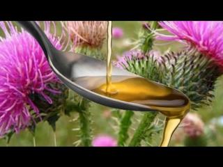 Масло расторопши рецепты самых полезных для здоровья масел