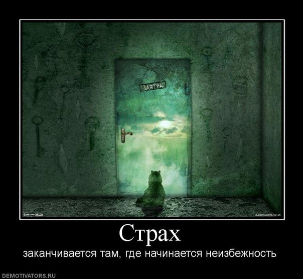 http://cs315524.vkontakte.ru/v315524543/56bb/VF6SGI0hV-c.jpg