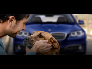 BMW Oil Change