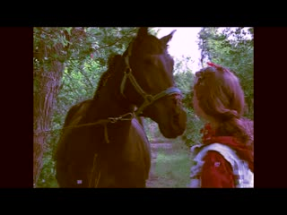 chapter 1: dialogue with the morning horse