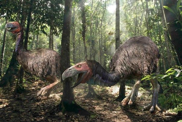 Более 90% всех видов животных. живших на Земле, вымерли еще до появления человек...