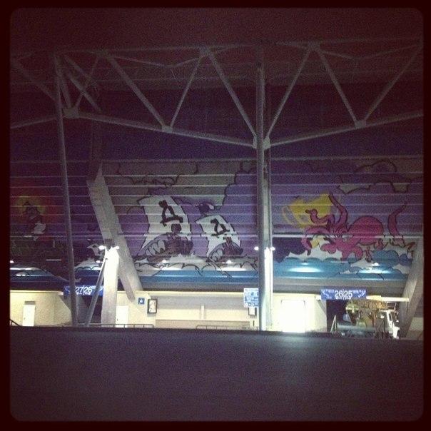 Граффити на Днепр-Арене