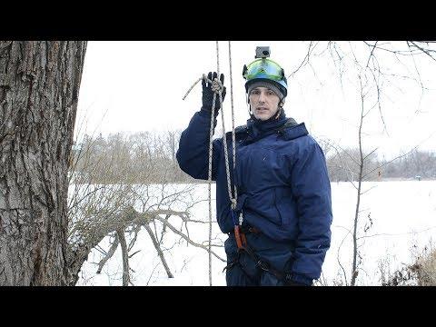 классический способ подъёма на дерево применяемый лесорубами арбористами северной америки