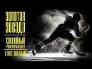 Хоккейный тренировочный центр Золотая Звезда