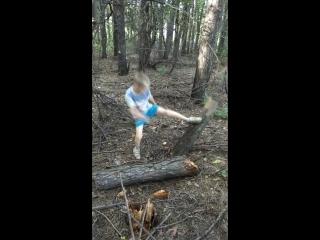 Сломаем лес