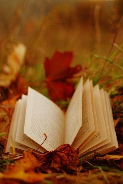 Дело не в количестве прочитанных страниц, а в количестве вызванных ими мыслей.