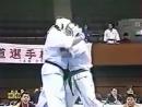 Открытый чемпионат Японии по Дайдо Джуку Каратэ КУДО