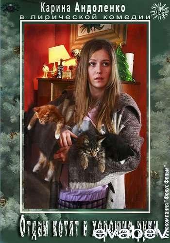 Отдам котят в хорошие руки смотреть