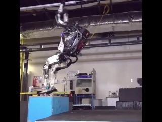 Спортивный робот