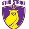Студенческая Страйкбольная Лига (ССЛ)