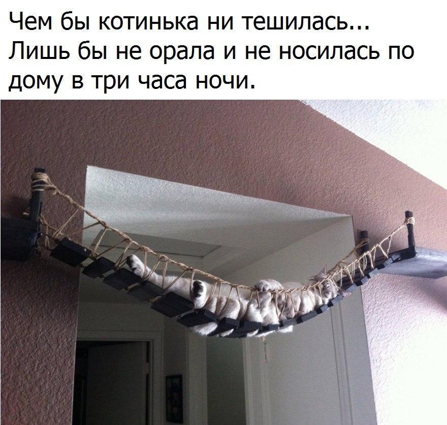 https://pp.vk.me/c543100/v543100852/2f0c3/u6D9XMvLSZo.jpg