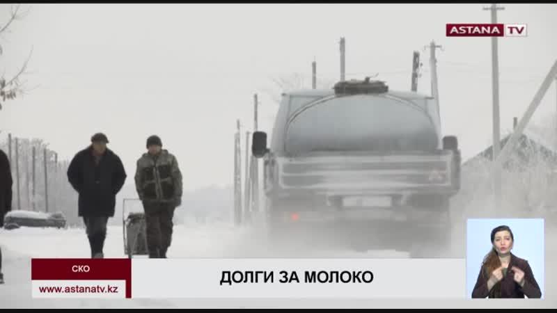 Миллионы тенге задолжал молочный завод в Петропавловске