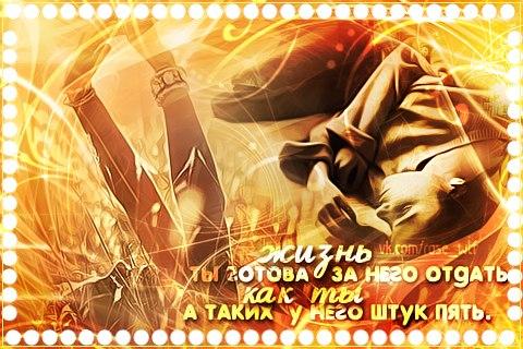 http://cs405016.userapi.com/v405016412/4511/fd8O3lhaPa8.jpg