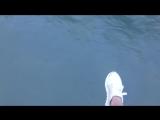 река Бзыбь, Абхазия, тарзанка 550м