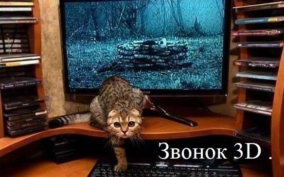 http://cs424925.vk.me/v424925989/66df/dtGcGlAge5o.jpg