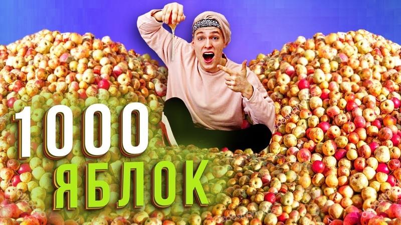 СКОЛЬКО СОКА в 1000 ЯБЛОК ┃ ПРОВЕРКА ЛАЙФХАКОВ димы масленникова