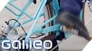 Das Fahrrad Ein modernes Wunder Galileo