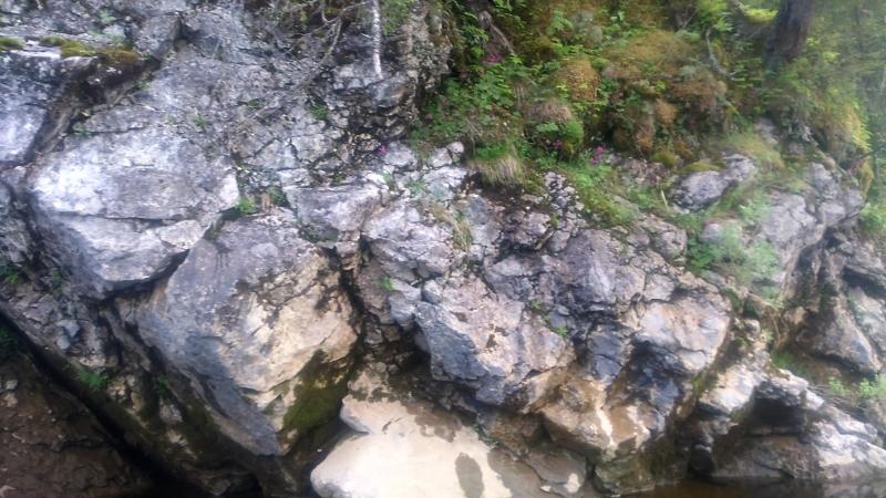 река яйва сплав