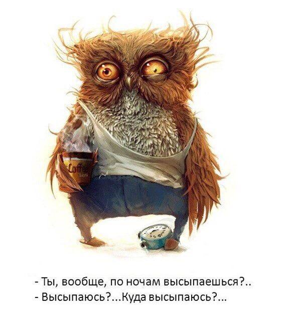 Сергей Денисов   Пересвет