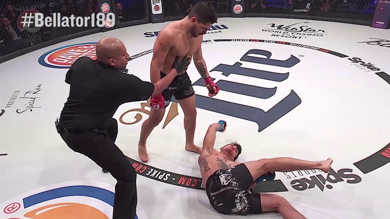 Bellator189: Gaston Bolaños - KNOCKOUT MOMENT bellator189: gaston bolaños - knockout moment
