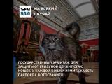 #ЪFM. На всякий случай. Парковая зона Москвы, МГУ и кошки Эрмитажа