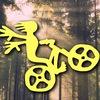 Велоэкстрим   Петрозаводск   Карелия