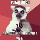 Камилла Мамедова фото №4