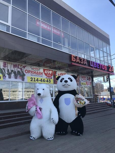 Букет цветов купить пионы в Нижнем Новгороде