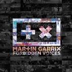 Martin Garrix альбом Forbidden Voices