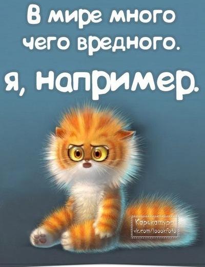 Артём Поднебесный, 12 января 1988, Санкт-Петербург, id122366812