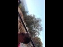 Джип сафари 2