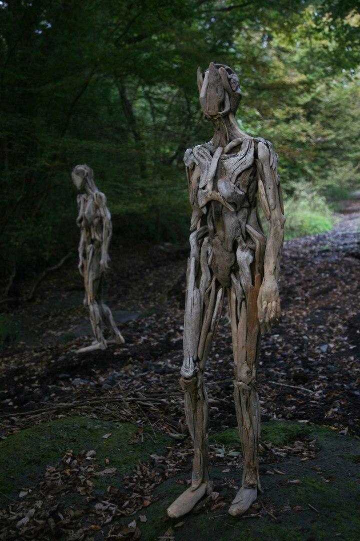 Нагато Ивасаки cоздает невероятные скульптуры в лесу из обыкновенных коряг.