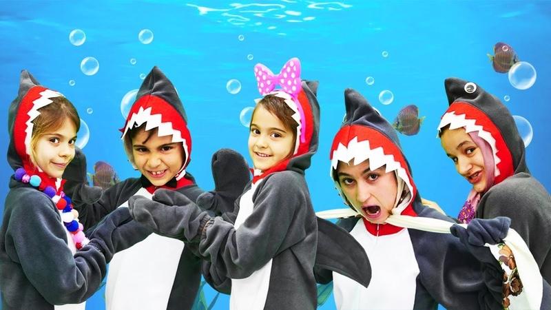 Fındık ailesi. Baby shark klibi. Çocuk şarkıları