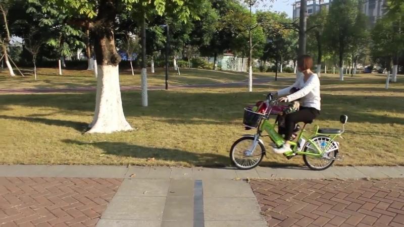 Семейный электрический велосипед Yanlin 48V60V