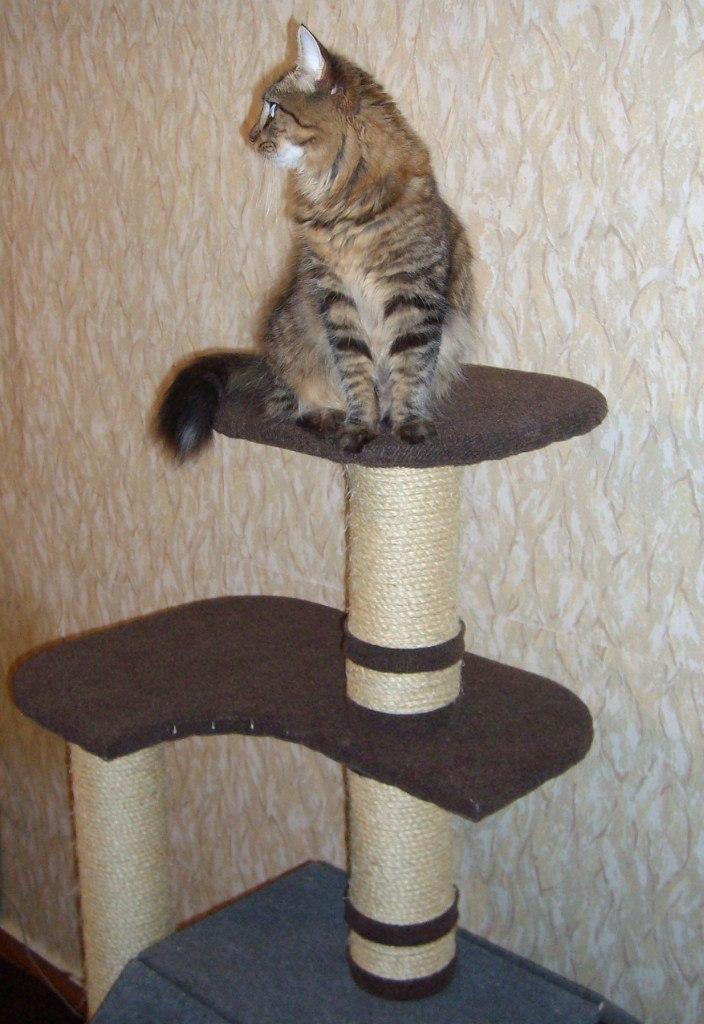 Домики для кошек своими руками мастер класс 79