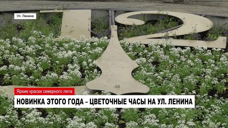 Улицы Ноябрьска украсили 82 тысячи цветов