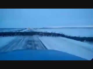 Миграция северного оленя на севере Красноярского края