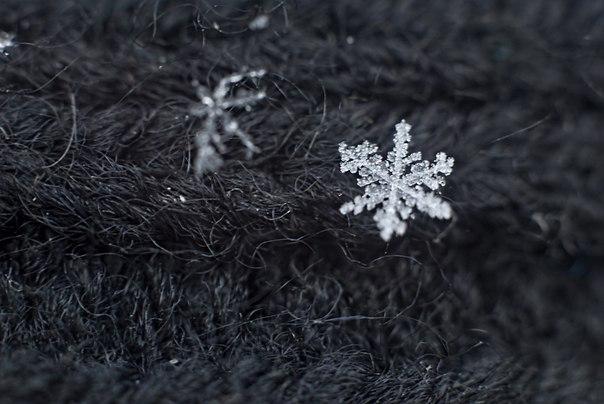 Апрельский снег, макрокольца