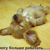 Алекс Алексеев, 28 мая 1979, Стерлитамак, id208430736