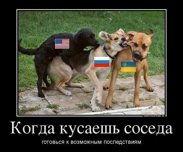 Членство в НАТО и партнерство с США обеспечило нам безопасность, - президент Румынии Бэсеску - Цензор.НЕТ 9250
