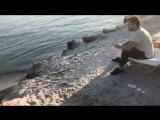 Олег Рой. Писатель и Море...)