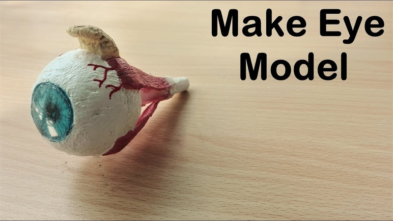 How to make Eye Model | 3d thermocol/styrofoam project