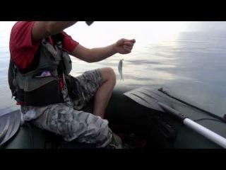 Морская рыбалка в Крыму, ловля ставрида с лодки 2014 год