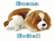 Спокойной ночи всем!