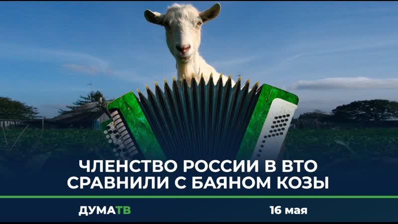 Членство России в ВТО сравнили с баяном козы