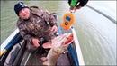 В этих корягах РЫБА лежит СЛОЯМИ! Ловля щуки. Первое рыболовное путешествие. Часть 2я.