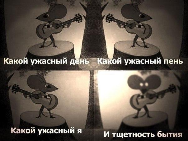https://pp.userapi.com/c543108/v543108683/30f4d/smqDA9R2L7g.jpg